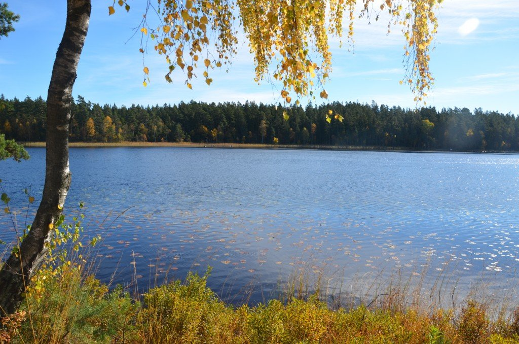A Lake in Skåne, autumntime