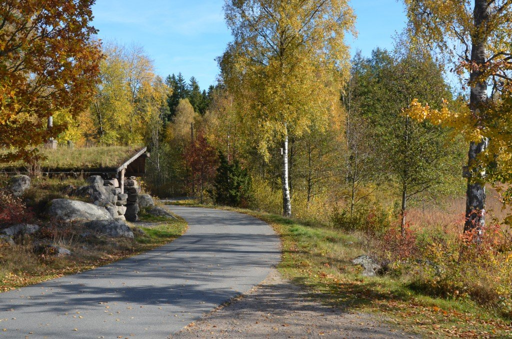 A road in Skåne, autumn time