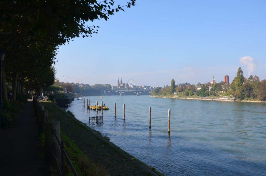 View across the Rhein